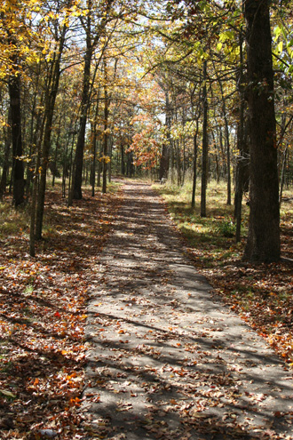Fall 2006 Trail to the East Overlook