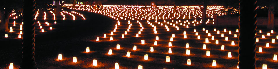 Poplar Grove National Cemetery Luminary Event (photo courtesy of Joanne Williams)
