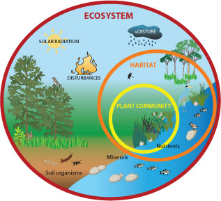 The worlds different ecosystems