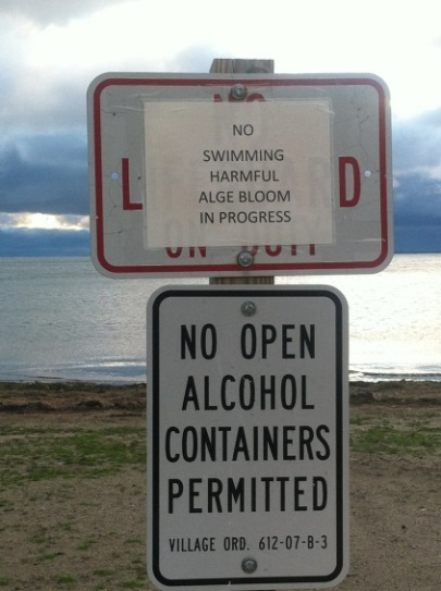 Temporary sign closing beach due to Harmful Algal Bloom
