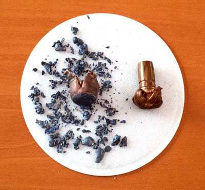 Hundreds of fragments from a spent lead bullet are shown