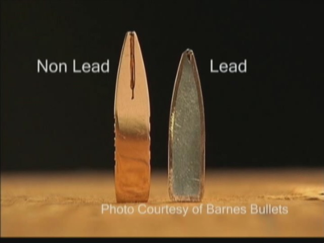 Nonlead bullet and lead bullet cross sections