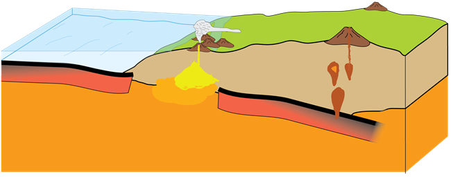 The spreading ridge is subducted beneath the continental plate.