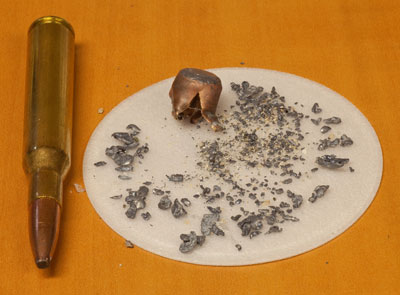 Hundreds of lead fragments are shown.