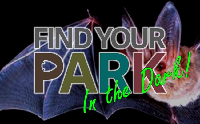 Find Your Park In The Dark logo over bat image