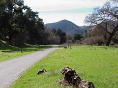 Tent sites at the Pinnacles Campground