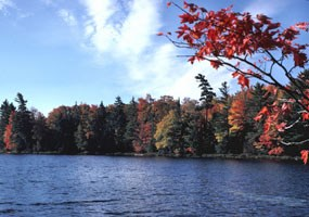 Brilliant fall color along an inland lake.