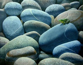 This painting by John Agnew, entitled Looking for the Shore, garnered the Grand Prize in the 2007 Paint the Parks competition. It depicts a green frog on beach stones in Pictured Rocks National Lakeshore.