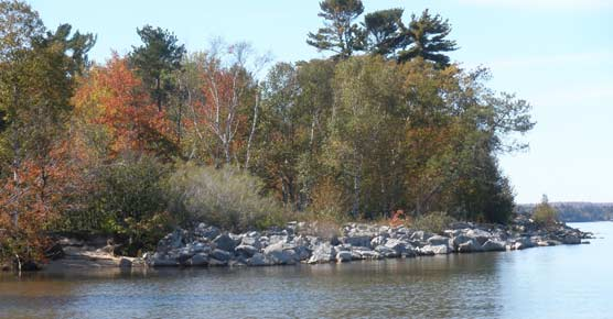 Sand Point beach with revetment, taken in the fall of 2010.
