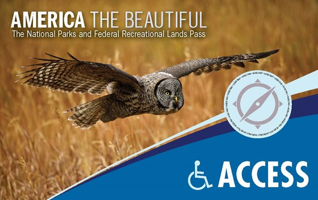 America the Beautiful National Parks and Federal Recreational Land Access Pass with image of owl flying across grassy area.