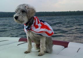Bailey the Wonder Dog loves a good boat ride.  But she doesn't set foot on dry land in the PRNL backcountry.