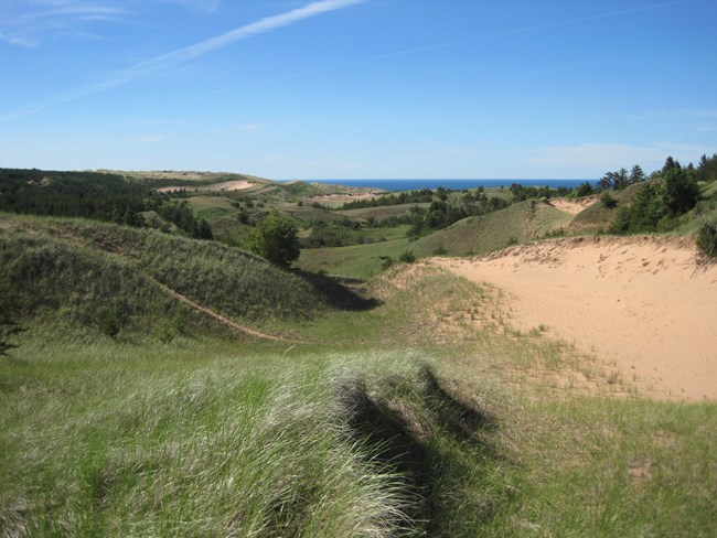 The Grand Sable Dunes landscape showing grass, shrubs, open sand, and trees.