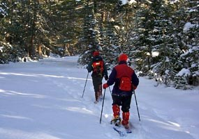 Two visitors trek through the snow covered forest on snowshoes.