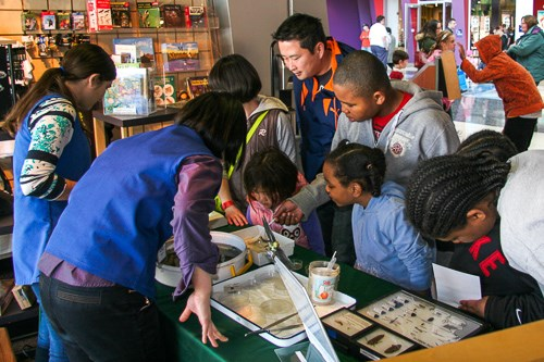 Children participating in a hands-on activity assisted by museum volunteers.