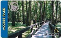 wooden boardwalk in swamp with trees