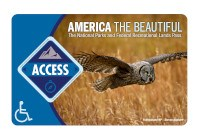 The 2021 America the Beautiful-The National Parks and Recreational Lands Access Pass with a large owl flying over a field.
