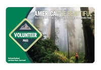The 2021 America the Beautiful-The National Parks and Federal Recreational Lands Volunteer Pass with a photo of a hiker looking skyward while standing in a forest of giant redwood trees.