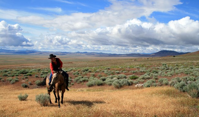 A rider in a red shirt and black cowboy hat sits on a brown horse with sagebrush and brown grass surrounding them and short grey hills in the background.