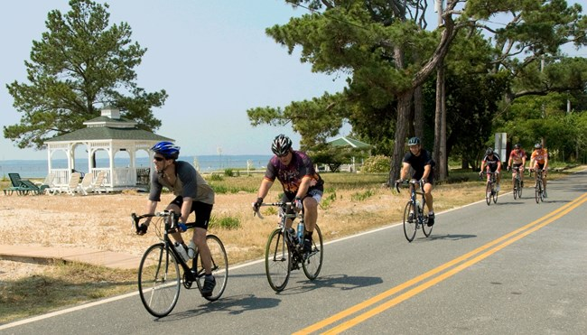 bicyclists single file on a road
