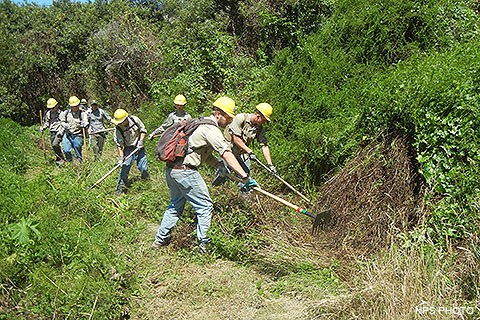 Eight YCC crew members clearing brush along a section of Muddy Hollow Road Trail.