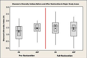 Figure 1 - Boxplots of Shannon-Weiner's diversity index for zooplankton species in the Project Area and Reference Areas before and after restoration. Click on this image to view a full size version of this graph (109 KB PDF).
