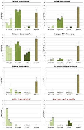 Figure A6. Bar graphs showing change in cover of eight of the most common species in the project area between 2009 and 2011 as compared to the reference site. Data for reference sites was collected in 2010. Note the differences in scale between species graphs. Error bars represent ±1 S.E. (Click on this image to download a 255 KB PDF of these graphs.)