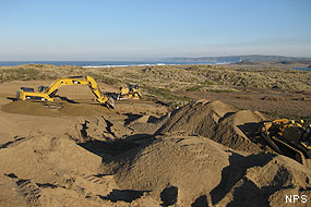 Coastal Dune Habitat Restoration Project: Excavator and bulldozers at pilot project area south of Abbotts Lagoon.