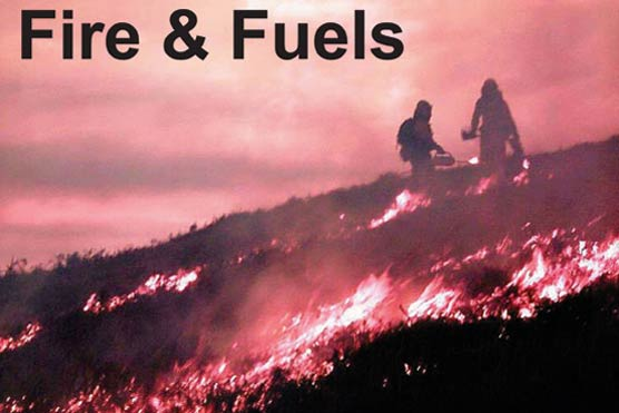 Fire & Fuels Newsletter photo