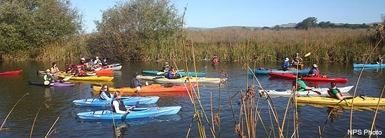 A kayaking tour explores the wetland habitat along Lagunitas Creek during the Giacomini Wetlands Restoration Project 1-year celebration.