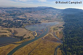 Aerial photograph looking south across the Giacomini Wetlands immediately after the Giacomini Ranch levees were breached. © Robert Campbell