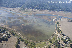 Aerial photograph of the Shallow Shorebird area in the northeastern portion of the East Pasture. © Robert Campbell