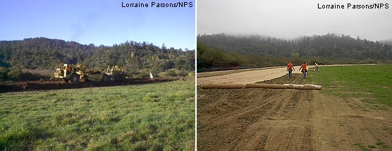 Giacomini Wetland Restoration Project: Levee Removal: Scrapers were used to shave the levee (left), and erosion control blanket was placed to stabilize disturbed soils (right).