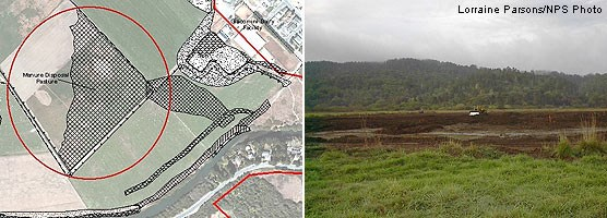 Graphic showing location of Manure Disposal Pasture in relation to Dairy Mesa and Point Reyes Station (left) and view of Manure Disposal Pasture from Dairy Mesa (right).