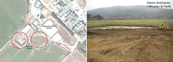 Graphic showing location of former manure ponds at Dairy Mesa (left) and picture of the southernmost of the two manure ponds being filled (right).