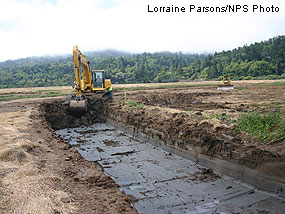 New tidal channel being created in East Pasture.
