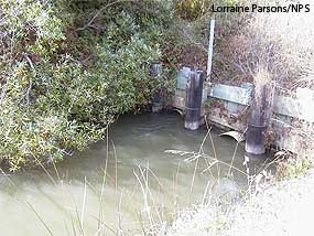 Former Fish Hatchery Creek culverts and tidegates.