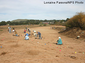 Volunteers from the public and local community helping to plant the former riprap area after riprap has been largely removed and the banks have been regraded to a more gradual slope.
