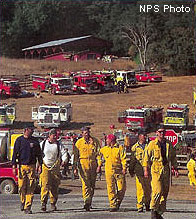 Fire crew at Bear Valley during 1995 Vision Fire.