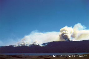 White smoke rising into a blue sky from Inverness Ridge during the 1995 Vision Fire.