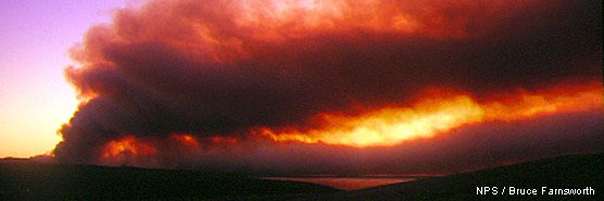 Smoke rising from Inverness Ridge during the 1995 Vision Fire at sunrise.