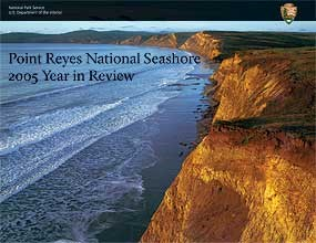Cover of the 2005 Year in Review