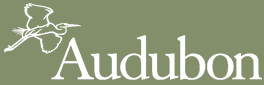 Logo for the National Audubon Society.