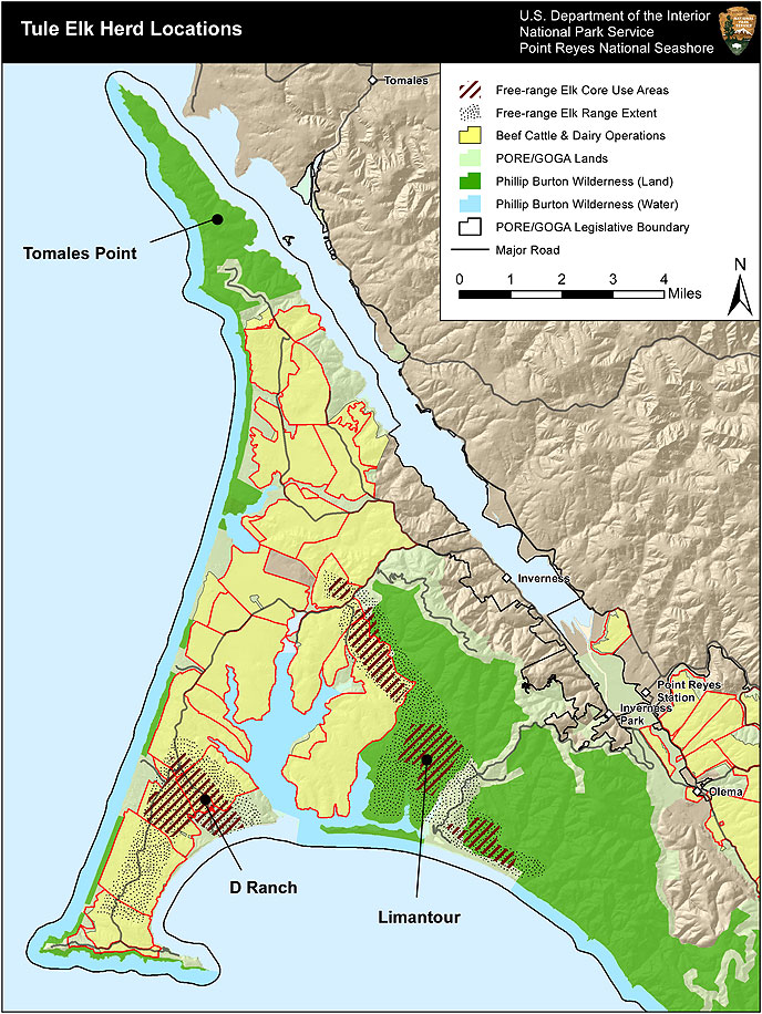 Charging Station Map >> Tule Elk at Tomales Point FAQ - Point Reyes National ...