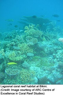 Lagoonal coral reef habitat at Bikini. (Credit: Image courtesy of ARC Centre of Excellence in Coral Reef Studies)