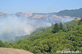 Fire on Bolinas Ridge near the Jewell Trail junction on July 23, 2012, at 2:30 pm.