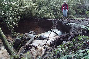 Uncovered culvert at the first creek crossing on Bear Valley Trail after the 2006 New Years flood.