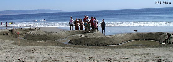 2002 Sand Sculpture Contest: Family 3rd Place: Entry #02: No River, Just Tides, by Sand Worthies