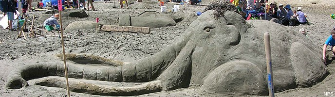 2014 Sand Sculpture Contest: Adult/Family Group People's Choice Award Winner: Entry #14: Woolly Mammoth, by the Garriott family