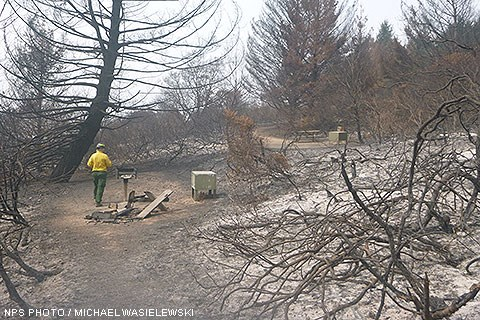 A man wearing a yellow, long-sleeved shirt and a hard hat stands in a campsite surrounded by burnt trees and shrubs and ash. The picnic table is mostly burnt, but the green, metal food storage locker and charcoal brazier appear unharmed.
