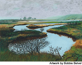 "Pastel painting ""Muddy Hollow"" by Bobbie Belvel"